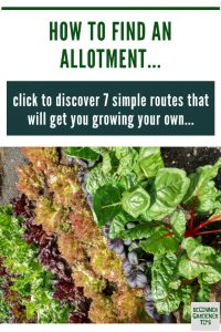 Find allotment near me pin