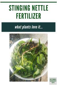 how to make stinging nettle fertilizer