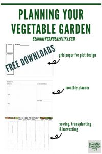 Vegetable garden planning  pages
